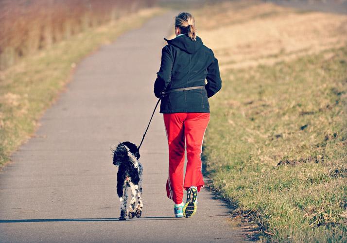 Forum Waldegg, Bewegung mit & für Ihren Hund, Aktives Gassi gehen, Fitnesswalk, Gassi gehen mit Hund