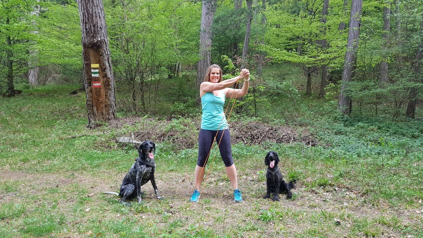 Gesund mit Hund durch den Herbst, Bewegung - FORUM WALDEGG informiert